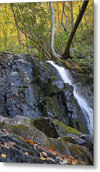 Laurel Falls Great Smoky Mountains National Park Metal Print