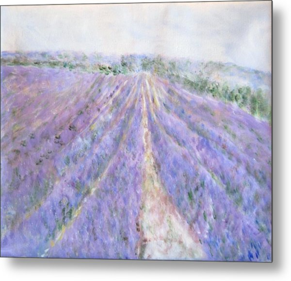 Lavender Fields Provence-france Metal Print