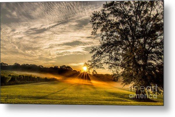 Lawn Sunrise Metal Print