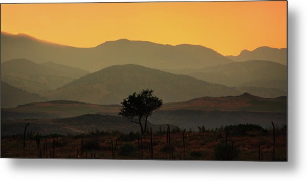 Layers Of Lucidity Metal Print