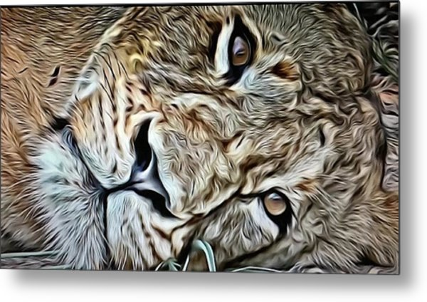 Lazy Lion Metal Print