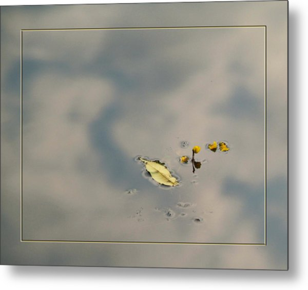 Leaf And  Reflection Metal Print