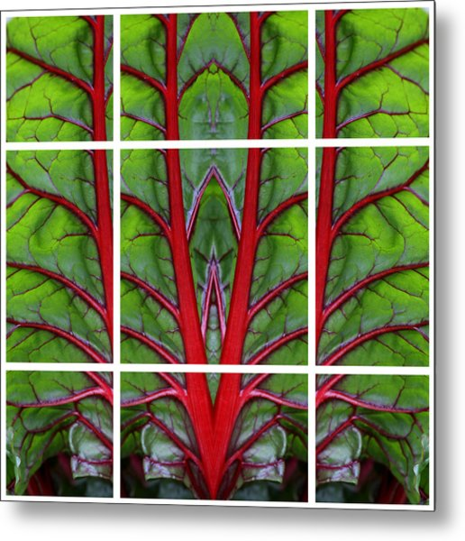 Leaf Of Life Metal Print