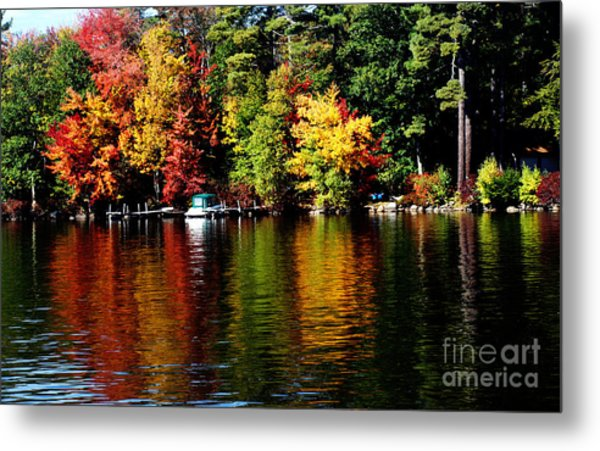 Leaf Peeping Metal Print