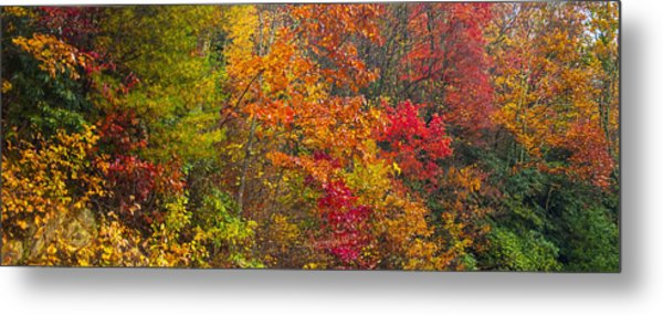 Leaf Tapestry Metal Print