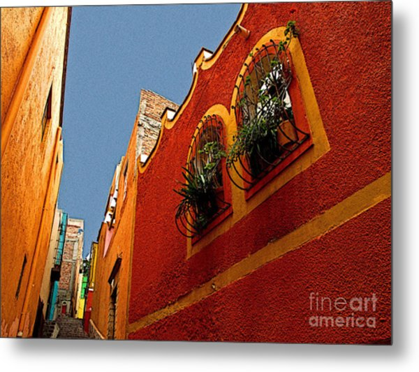 Leafy Windows Metal Print by Mexicolors Art Photography