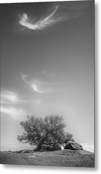 Leaning In Metal Print by Joseph Smith