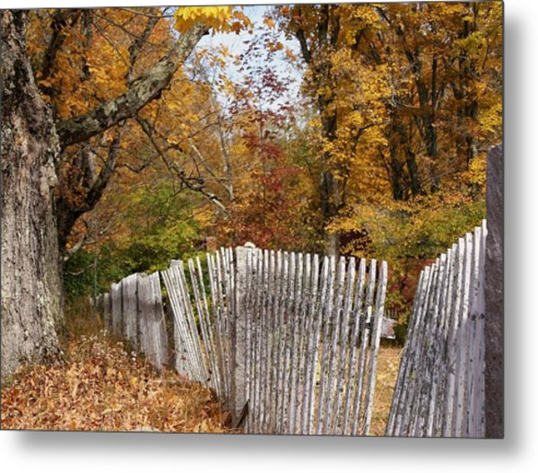 Leaves Along The Fence Metal Print