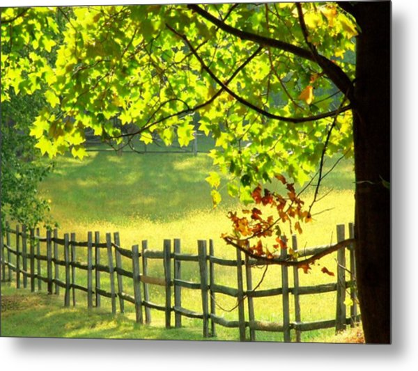 Leaves And Fence Metal Print