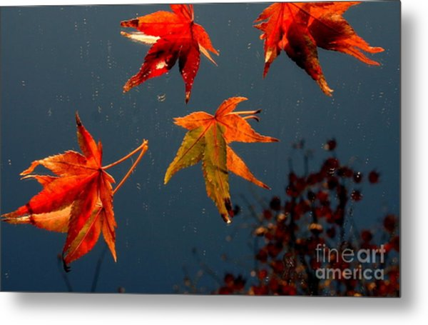 Leaves Falling Down Metal Print