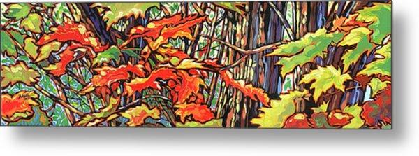 Leaves Long Metal Print by Nadi Spencer