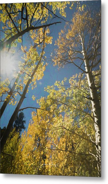 Leaves Of Fall Metal Print
