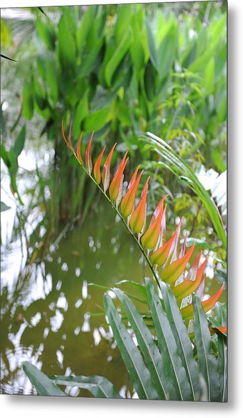 Leaves On Fire Metal Print by Jessica Rose