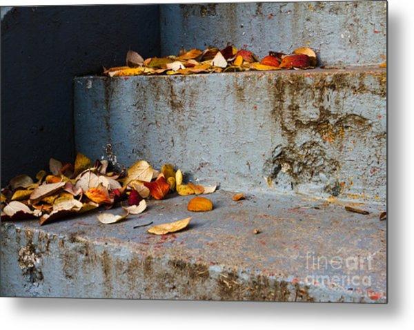 Leaves On The Stairs Metal Print