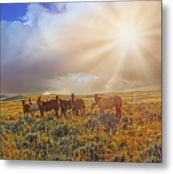 Led By The Light Metal Print
