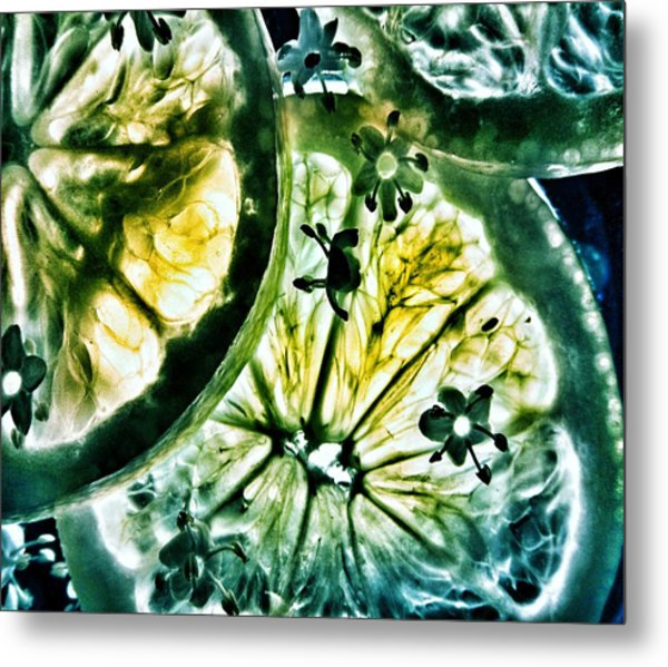 Metal Print featuring the photograph Lemon And Lime by Marianna Mills