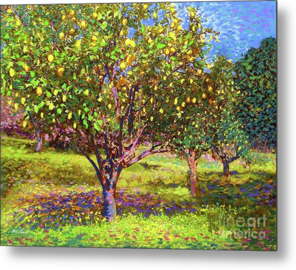 Lemon Grove Of Citrus Fruit Trees Metal Print
