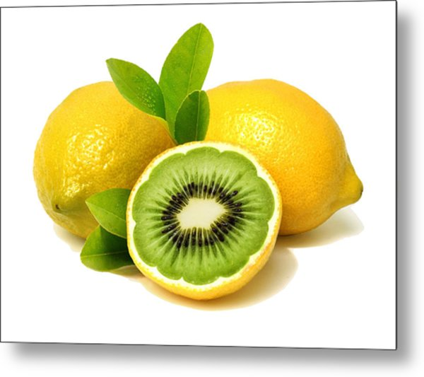 Lemon Kiwi Metal Print