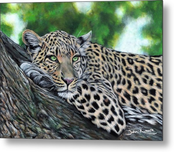 Leopard On Branch Metal Print