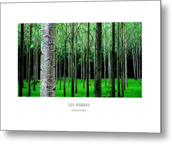 Metal Print featuring the digital art Les Arbres by Julian Perry