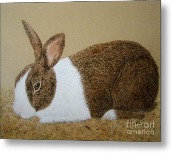 Les's Rabbit Metal Print