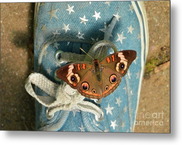 Let Your Spirit Fly Free- Butterfly Nature Art Metal Print