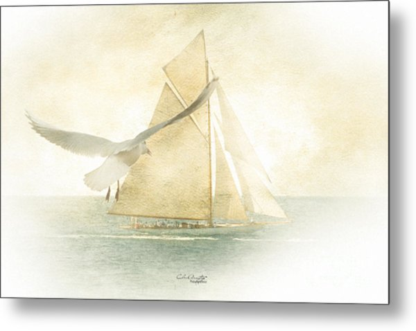 Let Your Spirit Soar Metal Print