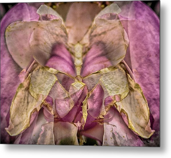 Lether Butterfly Or Not Metal Print