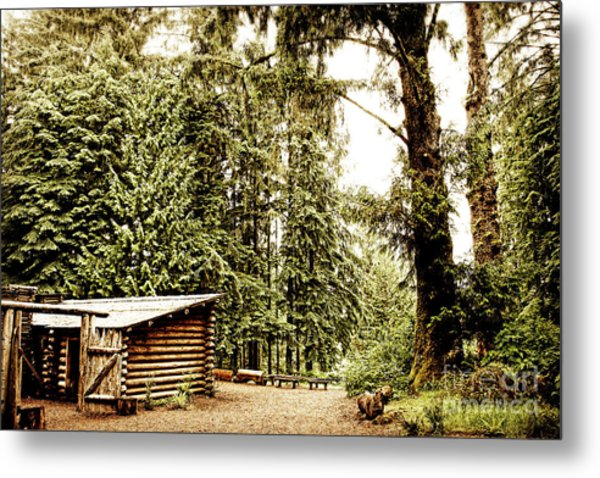 Lewis And Clark's Fort Clatsop In The Old Growth Forest Metal Print by Lincoln Rogers