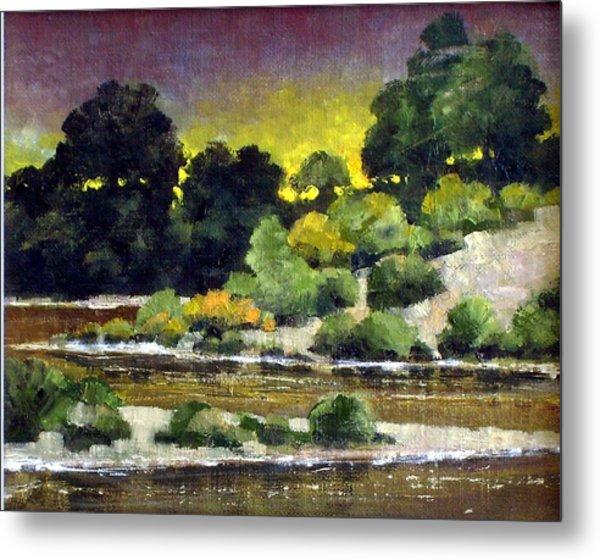 Lewis River At Woodland Metal Print