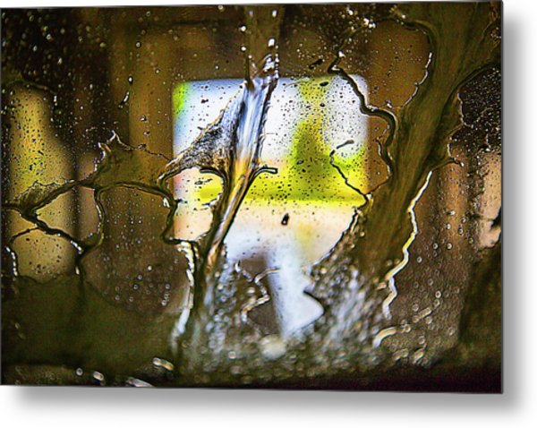 Metal Print featuring the photograph Life 101 by Dart Humeston