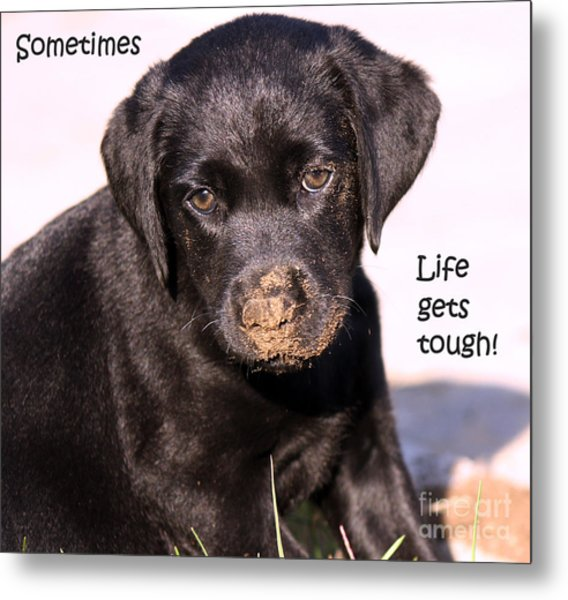 Life Gets Tough Metal Print