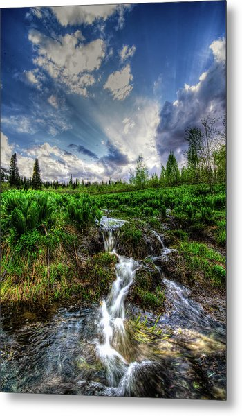 Metal Print featuring the photograph Life Giving Stream by Bryan Carter