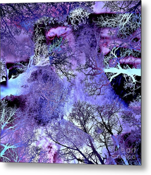 Life In The Ultra Violet Bush Of Ghosts  Metal Print