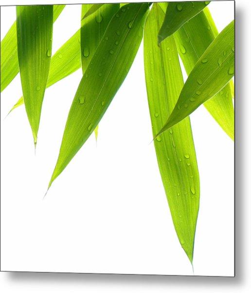 Life Is Green Metal Print