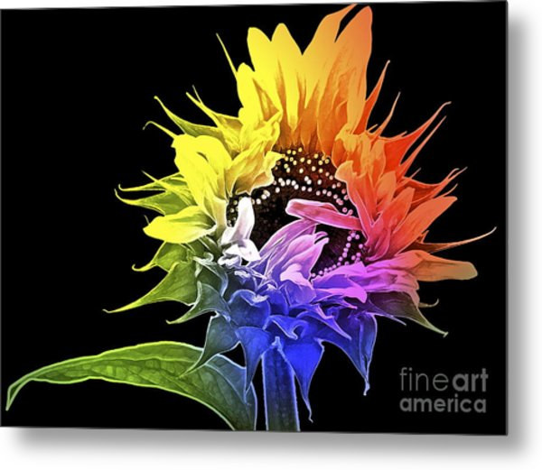 Life Is Like A Rainbow ... Metal Print