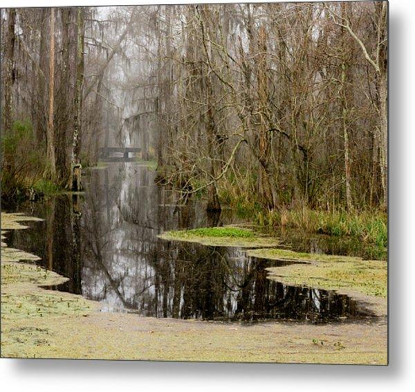 Light Fog On The Swamp Metal Print