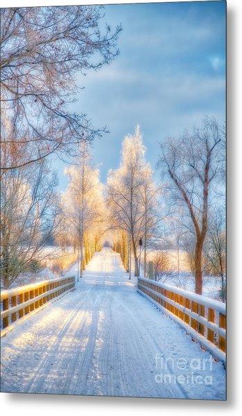 Light Of Winter Metal Print
