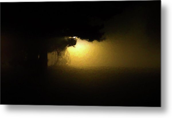 Light Through The Tree Metal Print