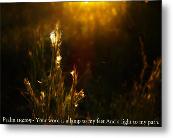 Light To My Path Metal Print by Roberto Aloi