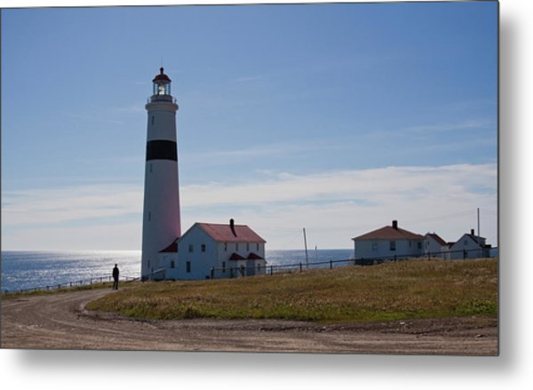 Lighthouse Labrador Metal Print
