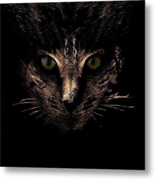 Lighting Metal Print