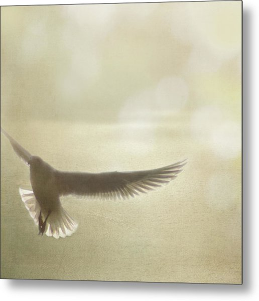 Metal Print featuring the photograph Lightness Of Being by Sally Banfill