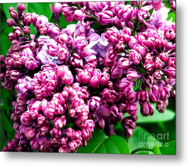 Lilac Blossoms Abstract Soft Effect 1 Metal Print