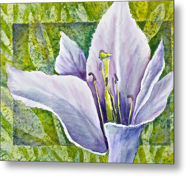 Lily In Purple Metal Print