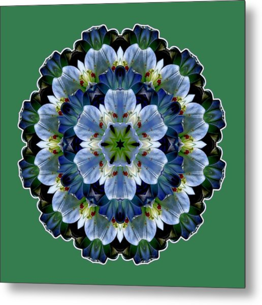 Metal Print featuring the digital art Lily Medallion by Lynde Young