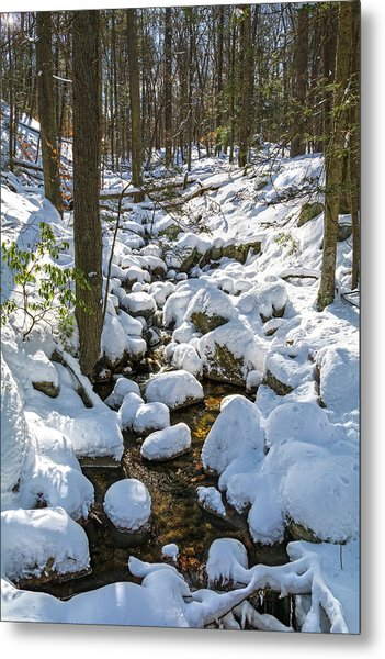 Lily Pads Of Snow Metal Print