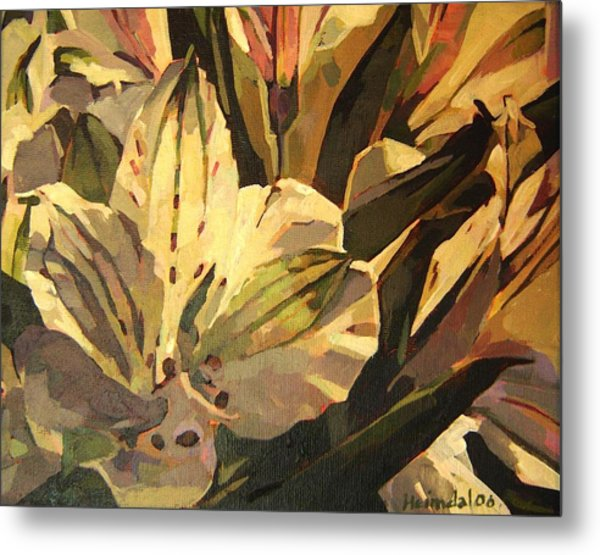 Lily White Metal Print by Tim  Heimdal