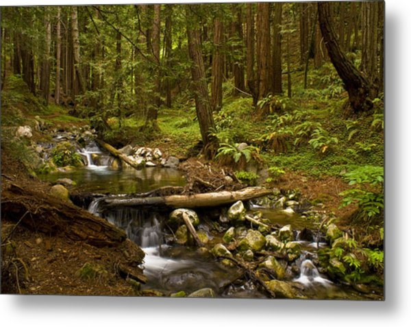 Lime Kiln Creek 1 Metal Print