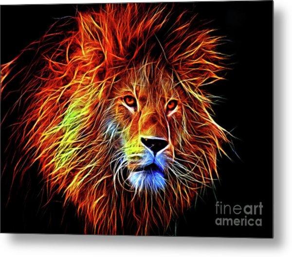 Lion 12818 Metal Print